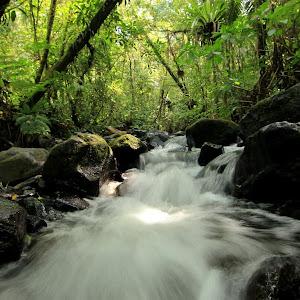 Water Flow.jpg