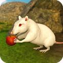 Mouse Simulator : Virtual Wild Life 2020 icon