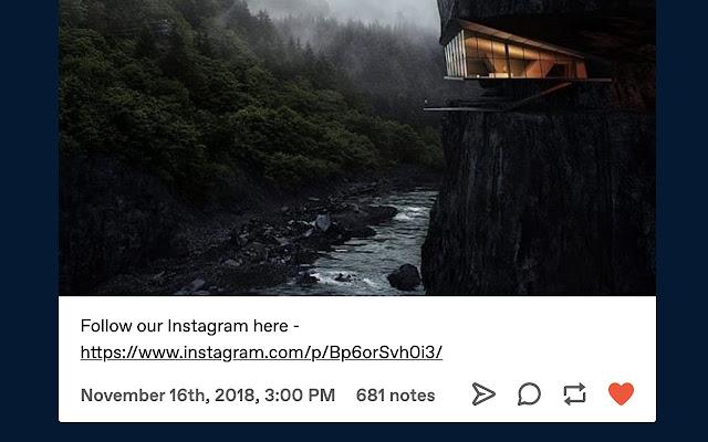 Tumblr Timestamps