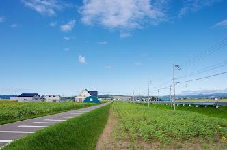 Photo: 北竜町の彩どり・8月の5