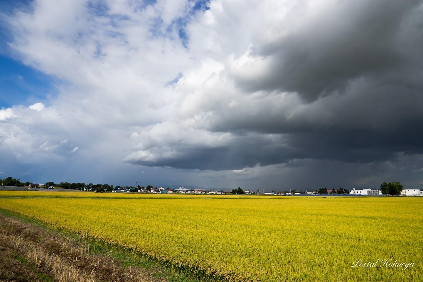 忍び寄る怪しげな雲