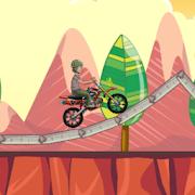 Moto GO