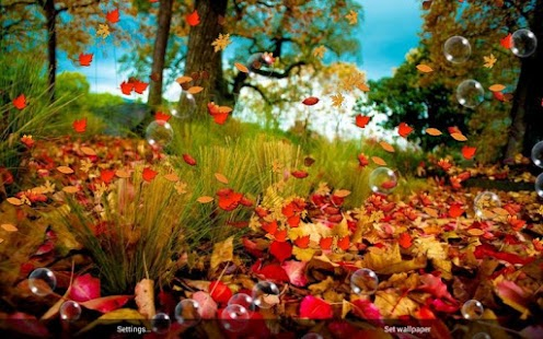 Herbst Frei Live Wallpaper Screenshot