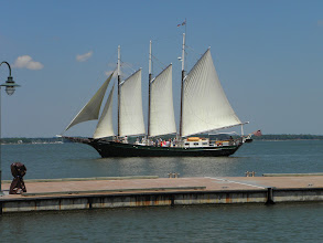 Photo: We shared the marina with Alliance.