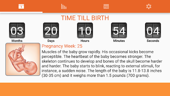 WomanLog Pregnancy Calendar- screenshot thumbnail