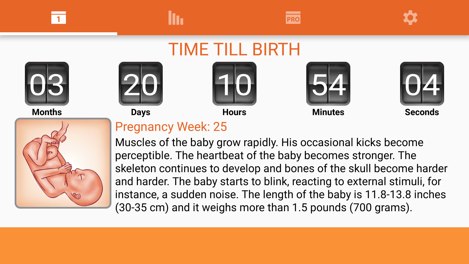 WomanLog Pregnancy Calendar- screenshot