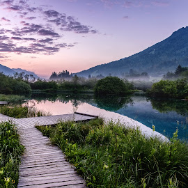 Nature reserve Zelenci near the town of Kranjska Gora  by Daniel Tomanovič - Landscapes Travel ( clouds, mirror, water, reflection, grass, green, pink, sunrise, morning, pinky, zelenci, river, mist )
