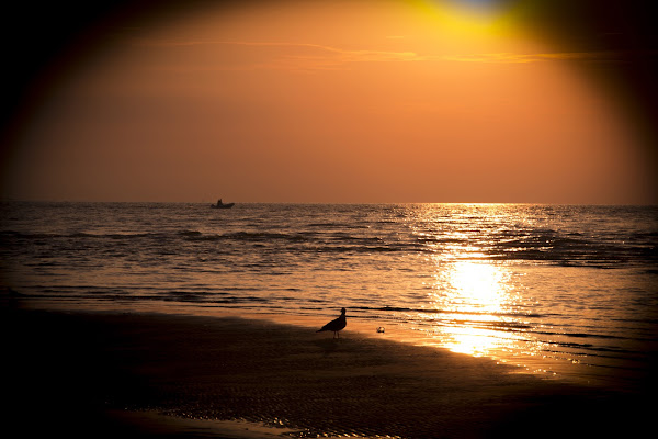 Luce Pace e Tranquillità di paolo_ross
