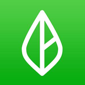 Branch Messenger - Work schedule & team app