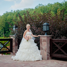 Wedding photographer Dmitriy Sapozhnikov (Sapojnikov). Photo of 21.01.2015