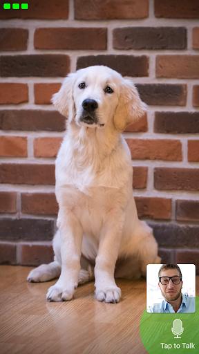 Download Pet Monitor VIGI MOD APK 1