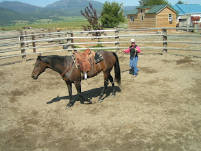 Photo: This is a series of photos that helps your horse change direction through the middle of the pen.