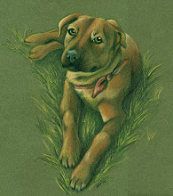 Photo: Ginger the Rodesian Ridgeback/Pit-Mix
