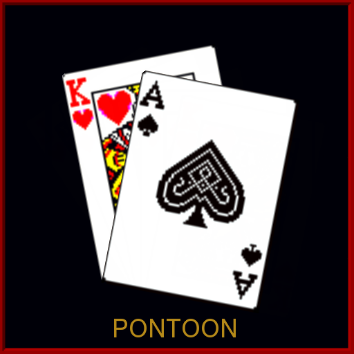 GO 21 Pontoon