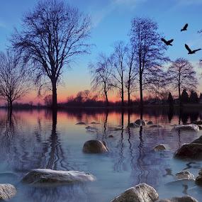 Reflection  by Dunja Milosic Odobasic - Digital Art Places