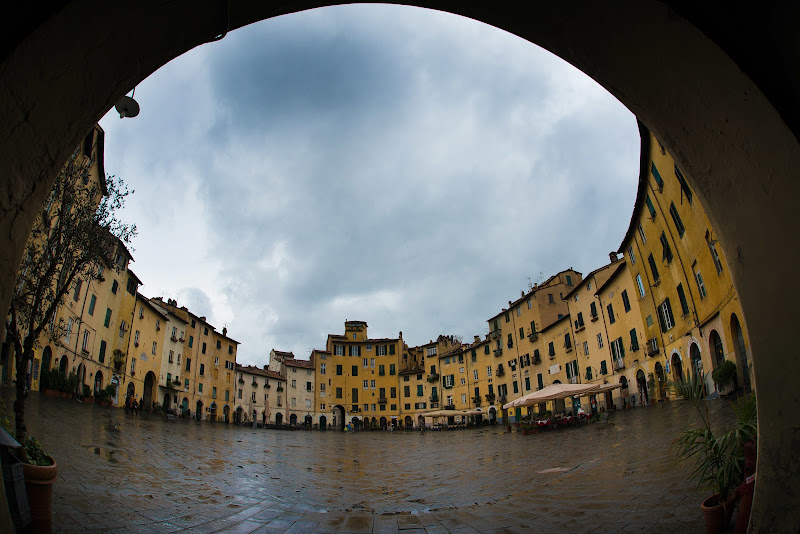 Lucca sotto la pioggia di Matteo Faliero