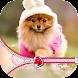 Cute Puppy Zipper Lock Screen - Androidアプリ