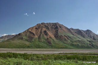 Photo: Denali National Park