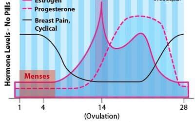 Có thể là hình ảnh về văn bản cho biết 'Progesterone Breast Pain, Cyclical Levels lone c Menses 14 (Ovulation) 28'