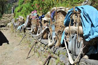 Photo: 運び屋の背負子と杖。