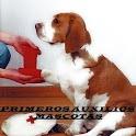 Primeros auxilios mascotas icon