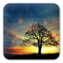 Sunset Hill Free LiveWallpaper icon