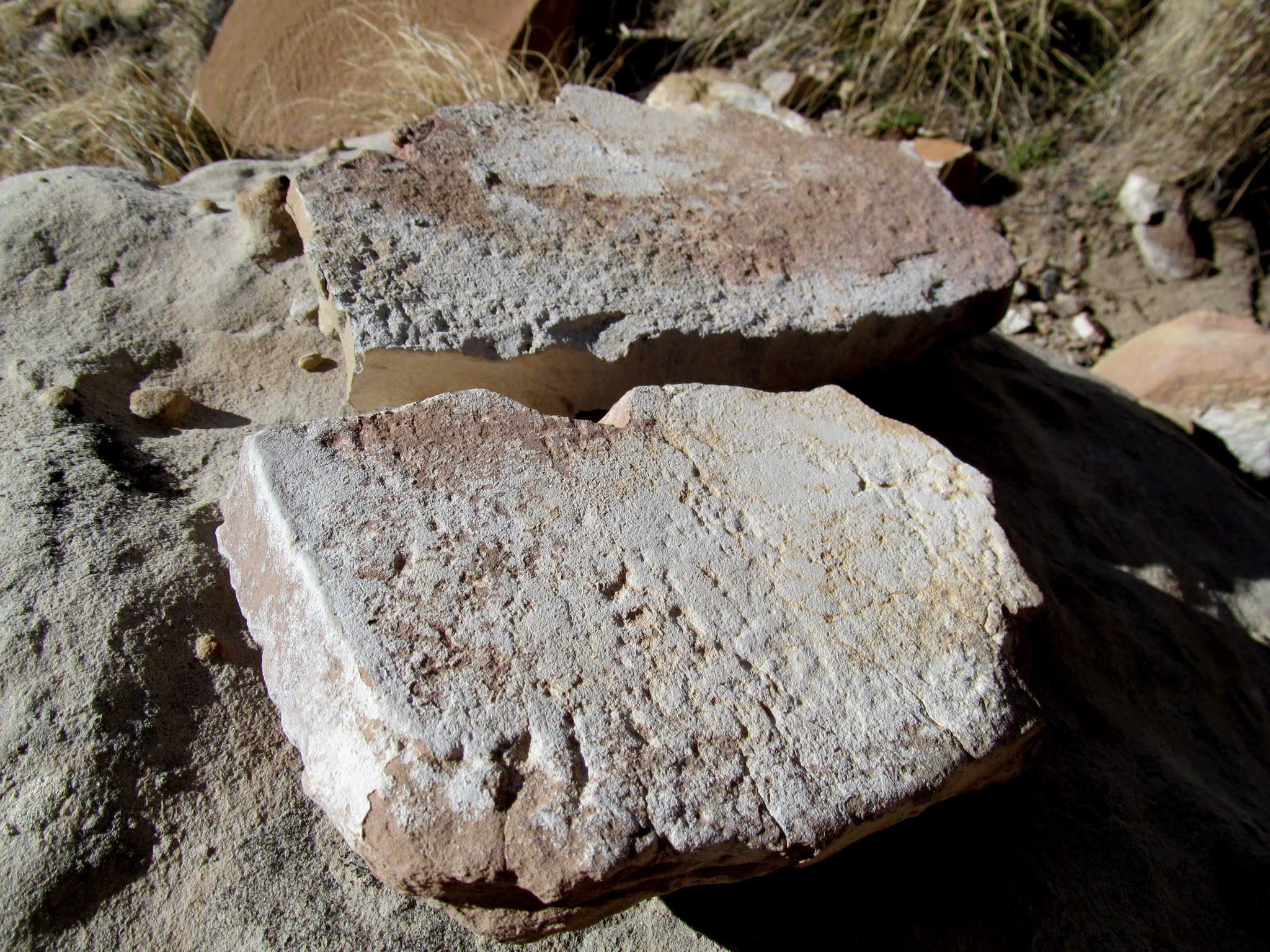 Photo: Metate fragments