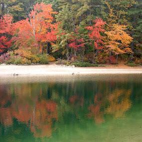 Emerald Fall Reflection by Anastasiya Manuilov - Nature Up Close Water ( fall, reflection, water )