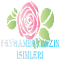 PEYGAMBER EFENDİMİZ icon