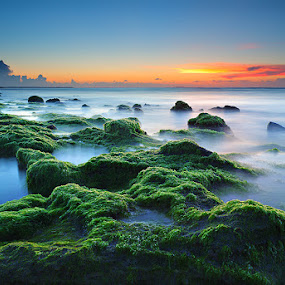 Dream Beach by Donny Louis - Landscapes Waterscapes