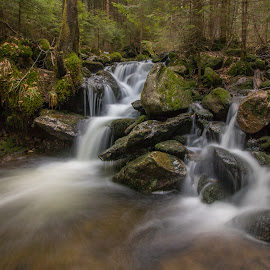 Black creek by Radek Lauko - Landscapes Waterscapes ( creek, waterfall, water,  )