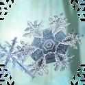 Falling Snow 3D Wallpaper