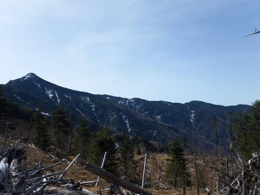 目指す奥茶臼山