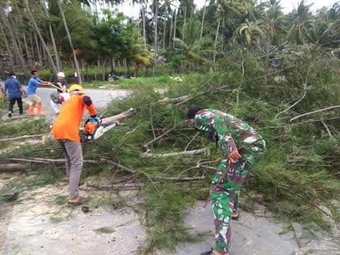 Aksi Tanggap dan Darurat Bencana Diaplikasikan BPBD Selayar Melalui Kesigapan Penanganan Pohon Tumbang