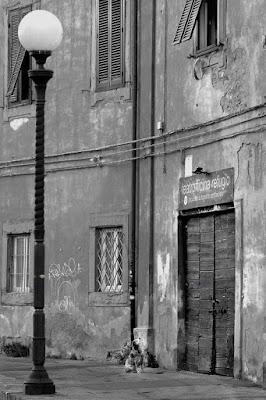 """In attesa dell'apertura del """"Refugio"""" di RobertaSilvestro"""