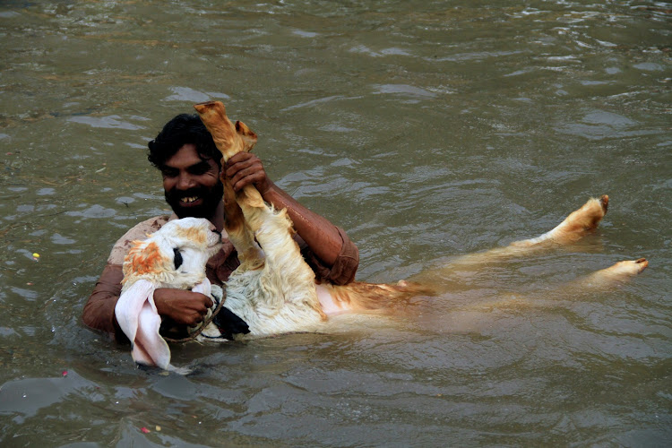 A man plays with his pet goat while taking a bathe to cool off in a canal during hot and humid weather in Lahore, Pakistan.