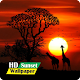 Download Sunset Wallpaper HD Pro For PC Windows and Mac