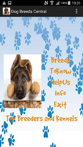 Dog Breeds Central