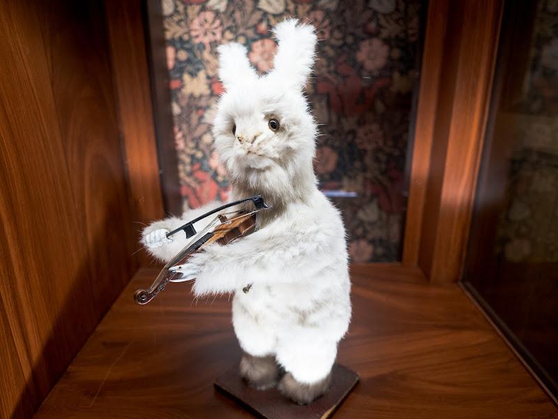 Coniglio musicale di anija