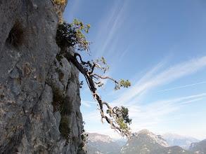 Photo: unterwegs am Klettersteig