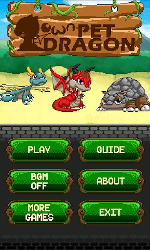 Own Pet Dragon