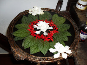 Photo: Beautiful urli display at the Ayurveda House - gardenias which I love