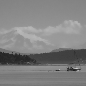 Sailing by Mt Baker 23 07 18.jpg