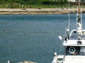 """Photo: ・・・海は""""シケ!"""" ぼけーっと店から船を眺めていると・・!?"""
