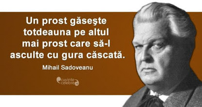 Scoala Gimnaziala 'Mihail Sadoveanu' Vaslui