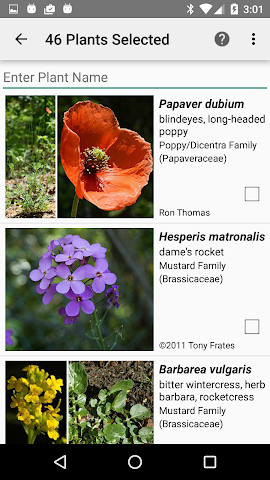 android West Virginia Wildflowers Screenshot 1