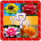 Ultimate Flower Quiz
