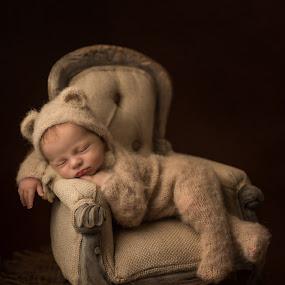 Little Bear  by Tracey Dobbs - Babies & Children Babies ( newborn shoot, newborn, portrait, fineart, child )