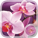 Pink Orchid Live Wallpapers icon