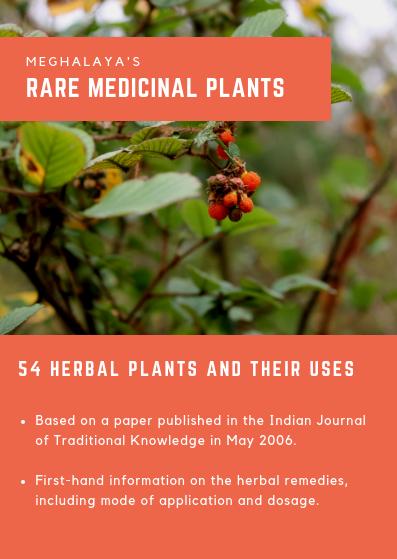Medicinal Plants of Meghalaya